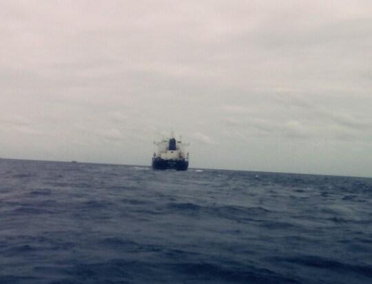 越南一艘渔船被撞沉 12名渔民成功获救 hinh anh 2