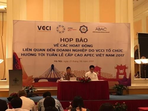 APEC工商咨询理事会:促进创新推动全面可持续发展 hinh anh 1