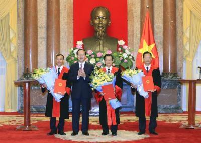 国家主席陈大光正式任命最高人民法院副院长和法官 hinh anh 1