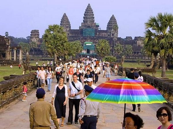 越南企业日益加大对柬埔寨投资力度 hinh anh 1