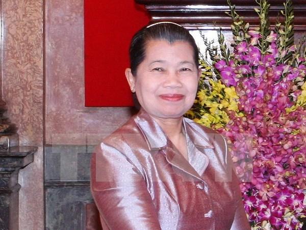 柬埔寨副首相梅森安:越南是柬埔寨伟大的朋友 hinh anh 1
