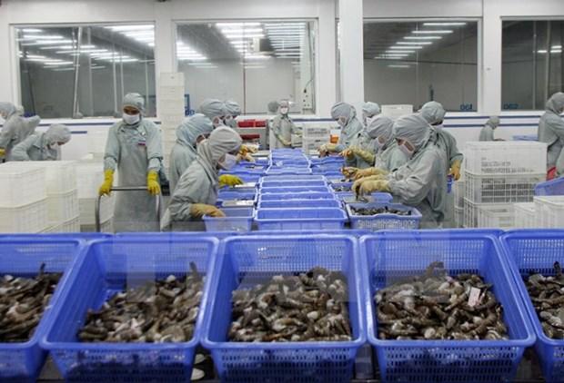 越南虾类寻找新的出口市场 hinh anh 1