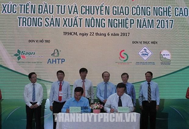 胡志明市推进农业领域的高科技技术转让 hinh anh 1