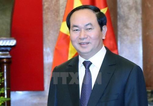 越南国家主席陈大光接受俄罗斯和白俄罗斯记者的采访 hinh anh 1