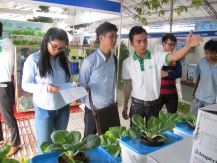 第五届胡志明市农业种子展销会为各企业等创造交流平台 hinh anh 1
