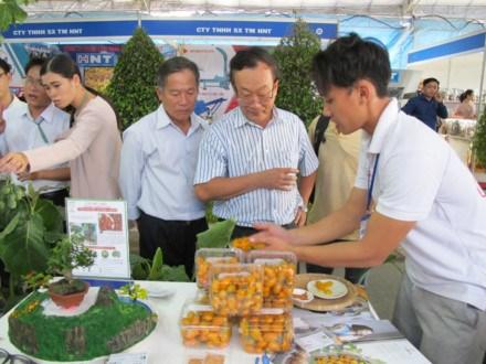 第五届胡志明市农业种子展销会为各企业等创造交流平台 hinh anh 2