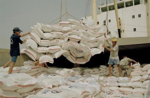 着力加大越南与俄罗斯和白俄罗斯的贸易合作力度 hinh anh 1