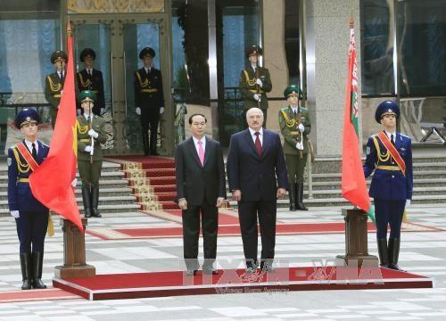 国家主席陈大光与白俄罗斯总统亚历山大·卢卡申科举行会谈 hinh anh 2