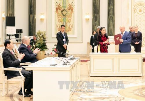 国家主席陈大光与白俄罗斯总统亚历山大·卢卡申科举行会谈 hinh anh 4