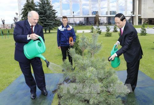 国家主席陈大光与白俄罗斯总统亚历山大·卢卡申科举行会谈 hinh anh 5