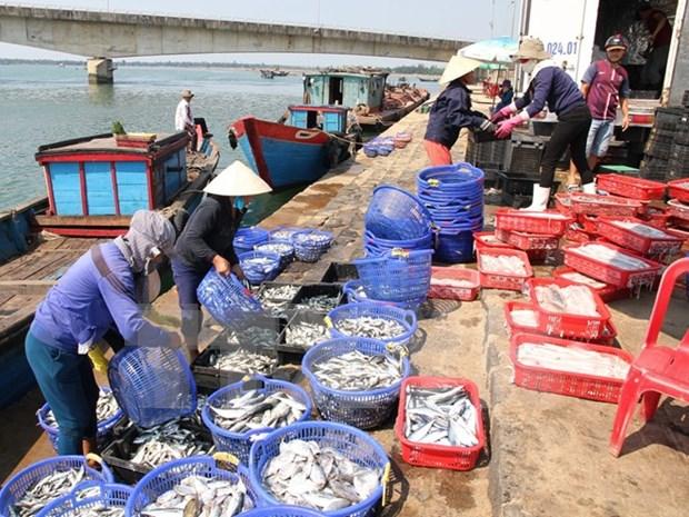 今年上半年越南农林水产品出口额达171亿美元 hinh anh 1