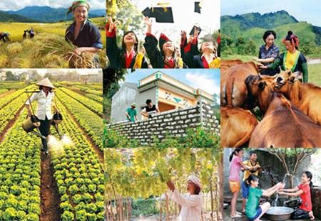 世行向越南提供1.53亿美元贷款 协助越南实施扶贫计划 hinh anh 1