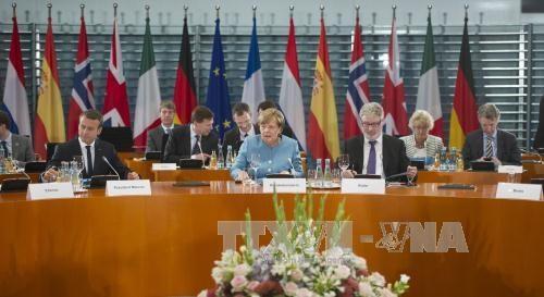 旅居欧洲越南人建议将东海问题列入二十国集团峰会的议程 hinh anh 1