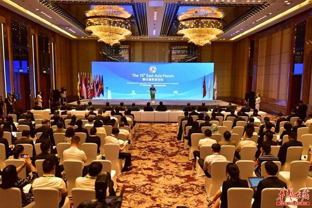 越中两国副外长共同主持第十五届东亚论坛 hinh anh 1