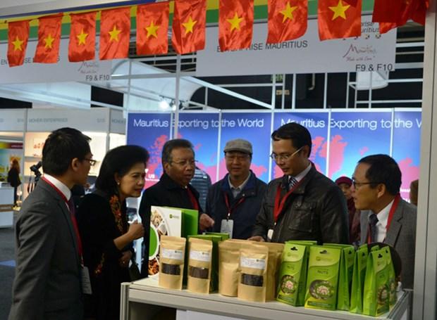 越南与南非加大贸易促进力度 hinh anh 1