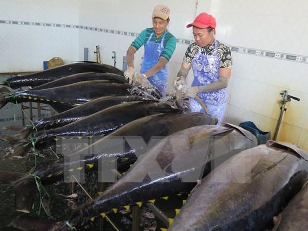 今年上半年越南水产品出口额约达35亿美元 hinh anh 1