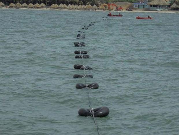 亚非欧-1国际海底光缆即将投入运营 hinh anh 1