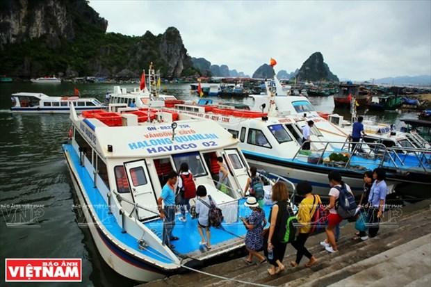 姑苏岛——吸引游客前来避暑休闲 的理想之地 hinh anh 2