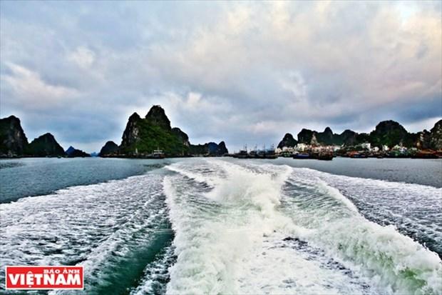 姑苏岛——吸引游客前来避暑休闲 的理想之地 hinh anh 3
