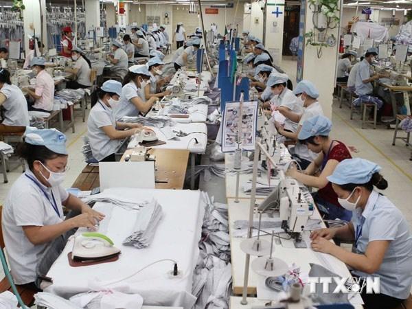 今年上半年越南经济向好 hinh anh 1
