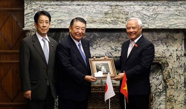 国会副主席汪周刘会见日本国会众议院议长和参议院副议长举行会谈 hinh anh 1