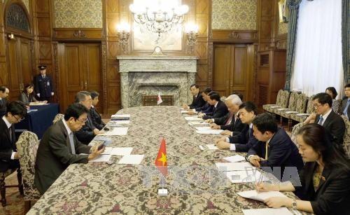 国会副主席汪周刘会见日本国会众议院议长和参议院副议长举行会谈 hinh anh 2