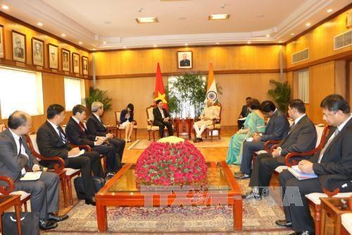 政府副总理兼外长范平明礼节性拜会印度副总统兼联邦院议长 hinh anh 1