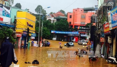莱州持续强雨已造成巨大经济损失 hinh anh 1