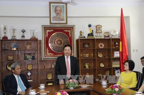 越南政府副总理范平明探访越南驻印度大使馆 hinh anh 1