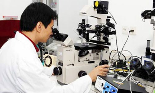 乂安省吸引高科技工业项目 hinh anh 1