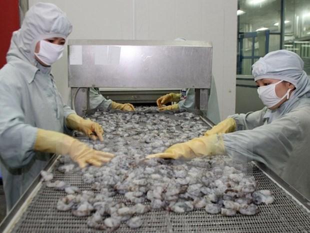 今年上半年越南虾类产品出口额同比增长近16% hinh anh 1