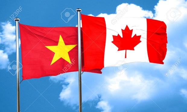 越南与加拿大举行首次政治磋商 hinh anh 1