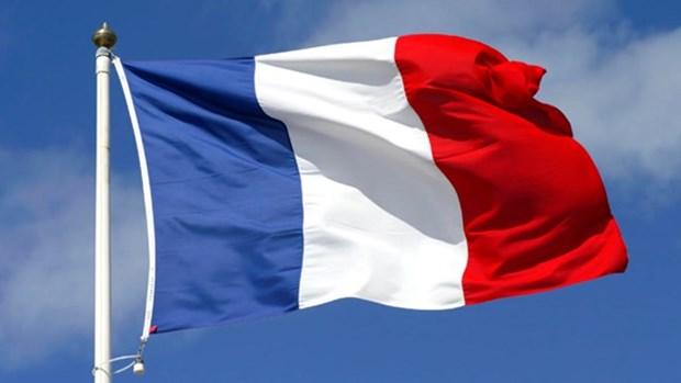 法国国庆纪念典礼在胡志明市举行 hinh anh 1