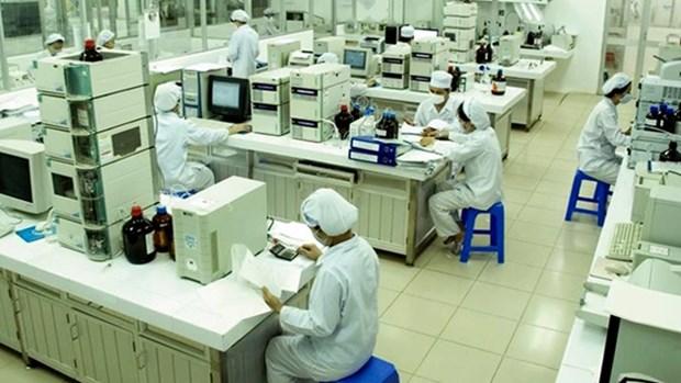 越南经济:机遇与挑战并行 hinh anh 1