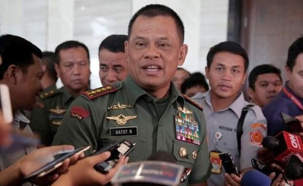 印尼和新加坡承诺加强合作 促进东南亚地区和平稳定 hinh anh 1