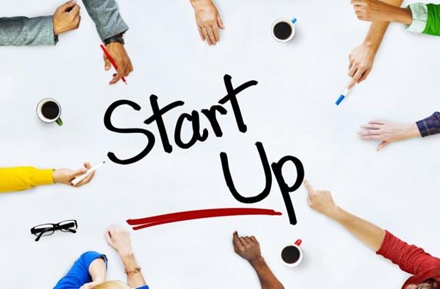 鼓励青年创业创新 努力实现可持续发展目标 hinh anh 1