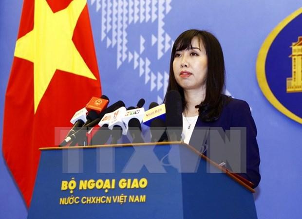 越南外交部发言人对一名越南公民在菲律宾被杀事件做出回应 hinh anh 1