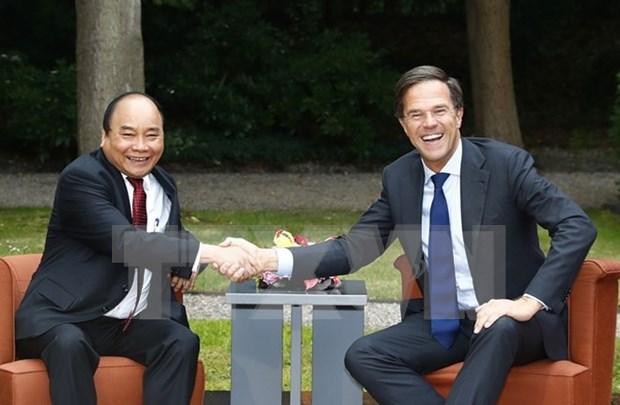 阮春福总理圆满结束对德国、荷兰的正式工作访问和出席G20领导人汉堡峰会 hinh anh 2