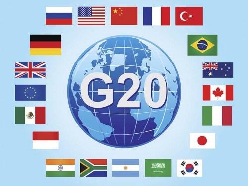 G20 – 越南与APEC 2017 hinh anh 2