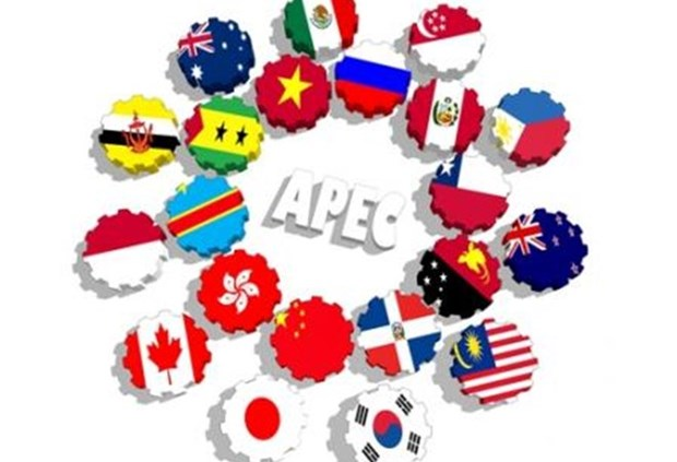 G20 – 越南与APEC 2017 hinh anh 1