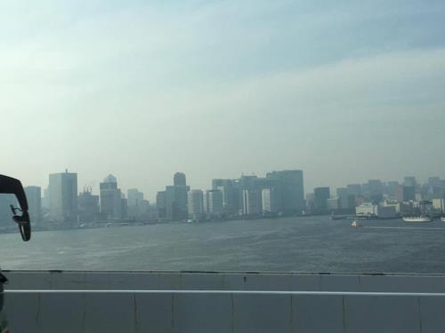 越南岘港市向日本横滨市学习借鉴智慧城市发展经验 hinh anh 2