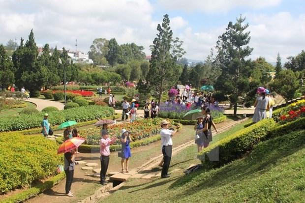 今年上半年林同省大叻市接待游客量为295万人次 hinh anh 1