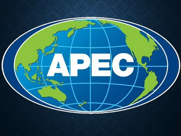 APEC需早日建立新的合作机制 实现旅游可持续发展 hinh anh 1
