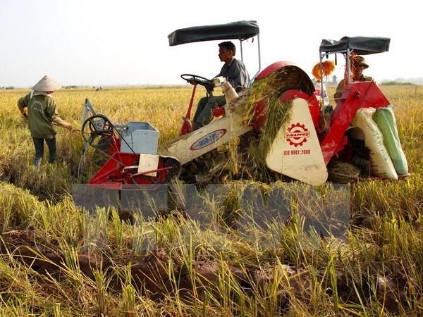 扩大越南农产品的出口范围:越南力争实现2017年农产品出口额约达330亿美元的目标 hinh anh 1