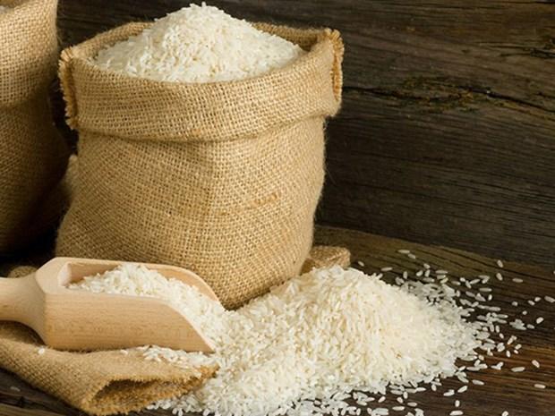 菲律宾将招标进口25万吨大米 hinh anh 1