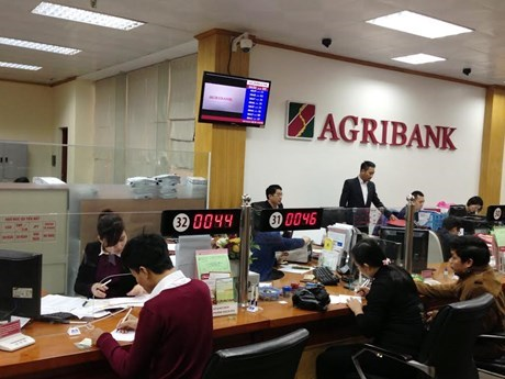 Agribank银行西贡分行前行长等人因涉嫌违法发放贷款被提起诉讼 hinh anh 1