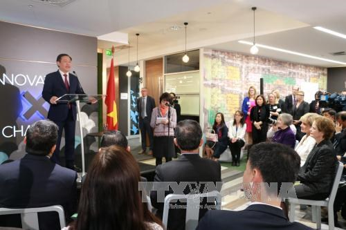 澳大利亚强调优先促进与越南的关系 hinh anh 3