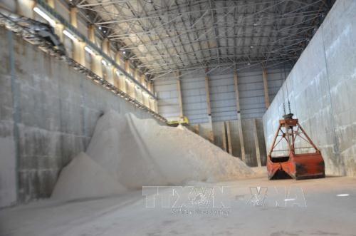 越南得农省氧化铝出口额达5000万美元 hinh anh 1