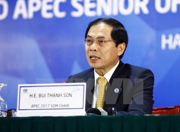 越南积极参加APEC工商咨询理事会第三次会议各项活动 hinh anh 1