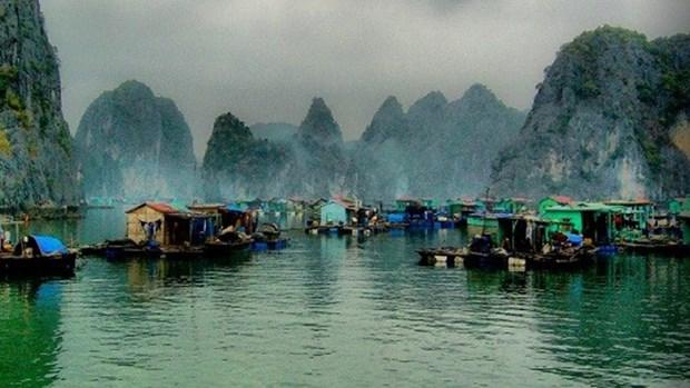 越南广宁省下龙湾上的万门渔村跻身景色美轮美奂之村的前22强 hinh anh 1